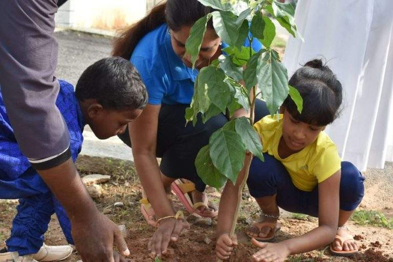 Mom and kids are planting trees